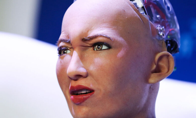 Meet Sophia that appear look Human